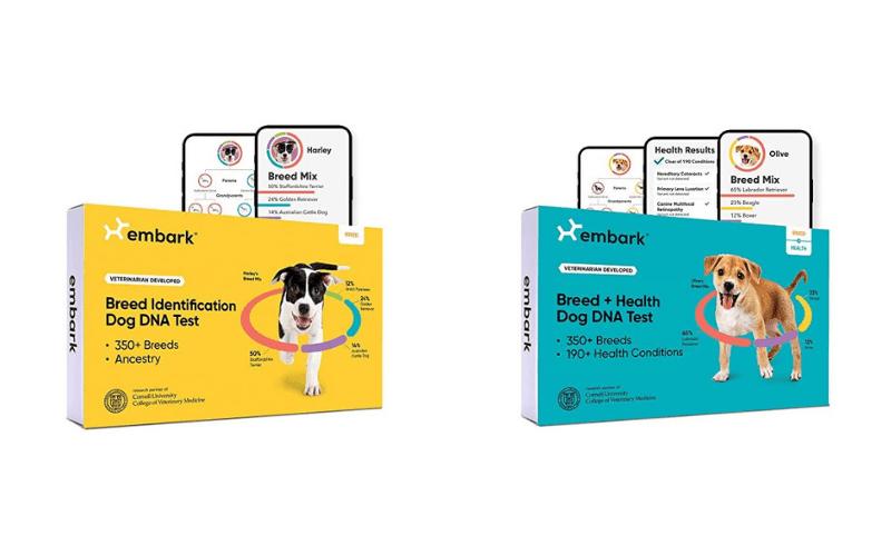 Embark DNA Kits Reviews