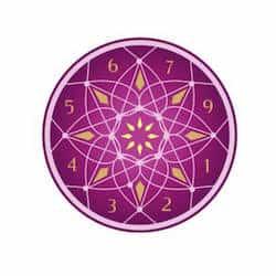 Numerologist logo