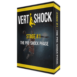 Vert Shock System