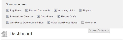 screen-options-dashboard-wordpress